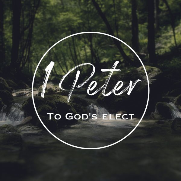 1 Peter – Chosen for a Purpose